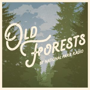 OldForests_Cover